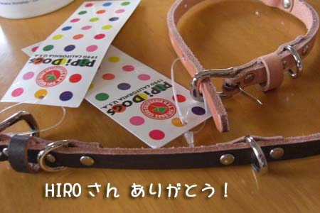 HIROさんから