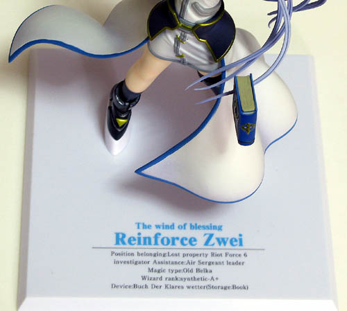 reinforce00