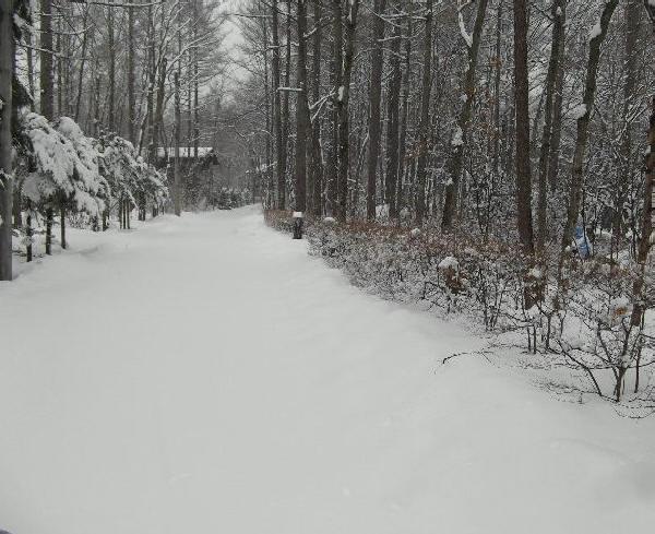 浅間高原の大雪