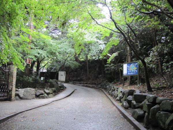 文学館への道