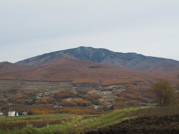 黄葉の山々