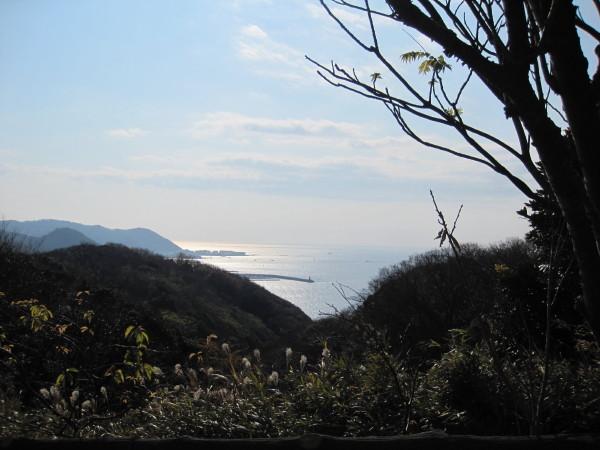 披露山公園からの湘南の海 2