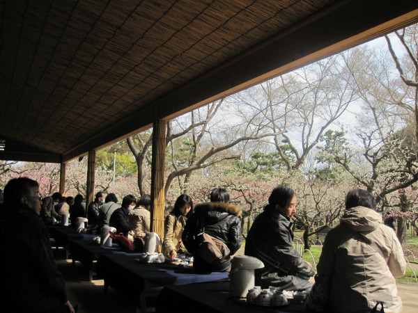 梅苑の茶屋