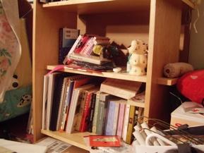 bookshelf 072909