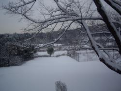 snow 0118092