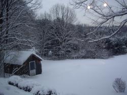 snow 0118093