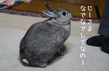 20080611_4.jpg