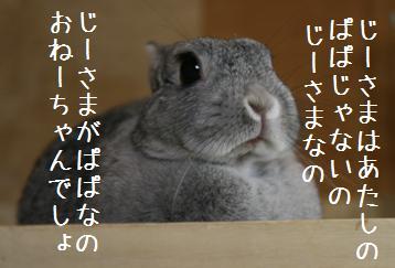 20080614_6.jpg