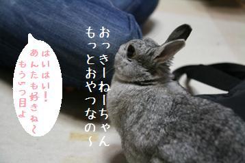 20080622_3.jpg