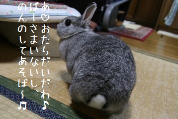 20080624_6.jpg