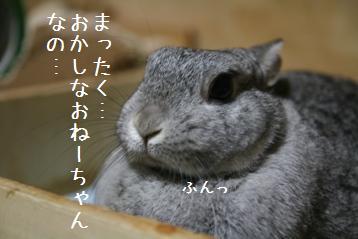 20080626_4.jpg