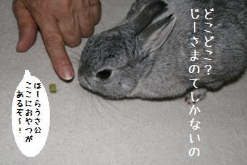 20080705_1.jpg