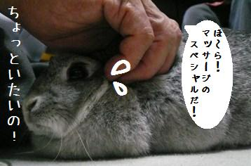 20080705_2.jpg