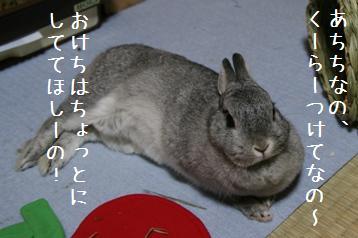 20080705_6.jpg
