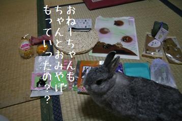 20080709_3.jpg