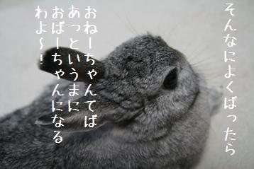 20080712_7.jpg