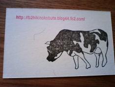 1212名刺牛