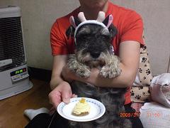 淳之介12才の誕生日15