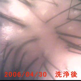 20060430220027.jpg