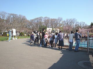 maruyama4.jpg