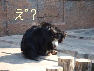 maruyama6.jpg