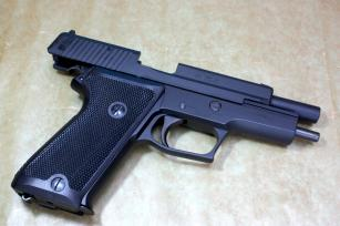 P220A2