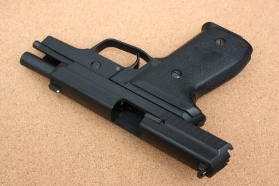 P229-3