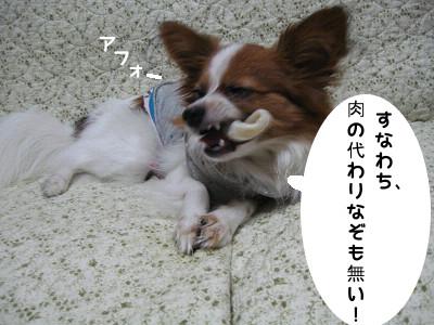 beji10.jpg