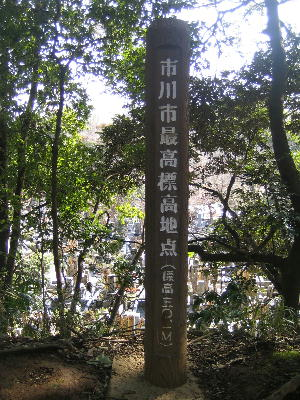 20080212r.jpg