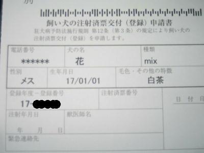 20080405b.jpg