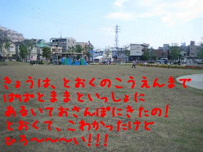 20080428e.jpg