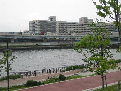 隅田川よ 438