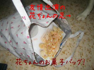 花ちょんのお菓子バッグ