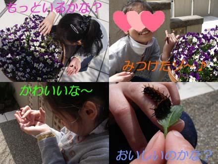 Blog213.jpg