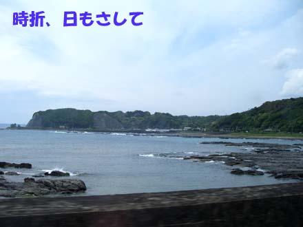 Blog261.jpg