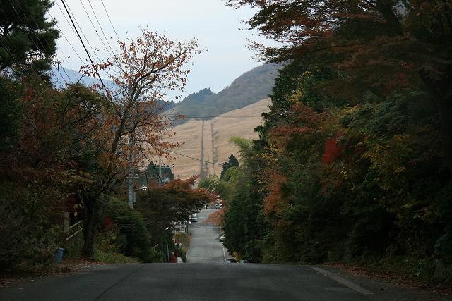 2008.箱根紅葉の旅