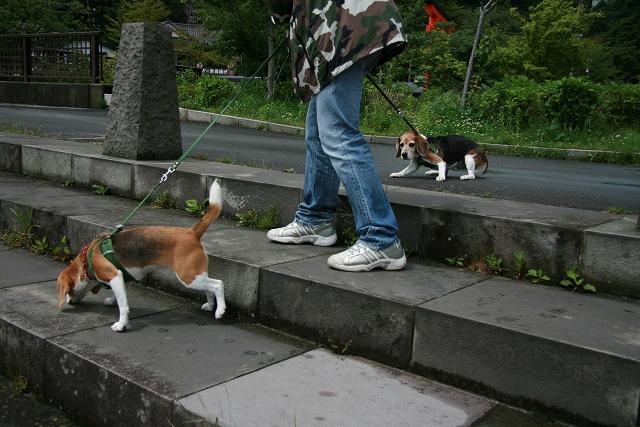 2009.06箱根旅行
