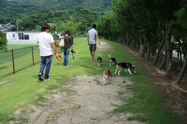 伊良湖旅行