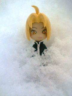 雪の中からこんにちは