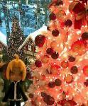 ミュンヘンなクリスマス!
