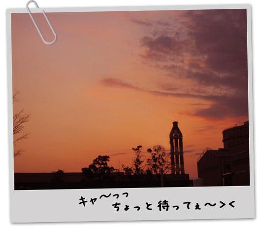 IMG_1702.jpg