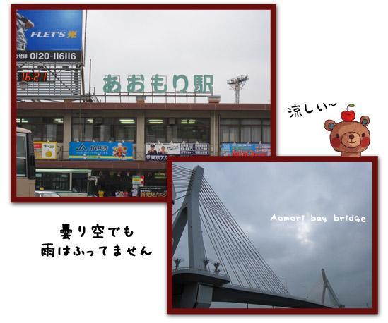 IMG_4037.jpg