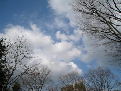 2012-3-11.jpg