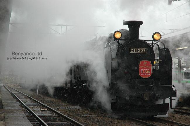 o223.jpg