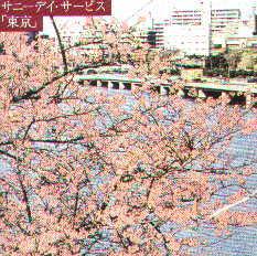 cd-sunnydaytokyo.jpg