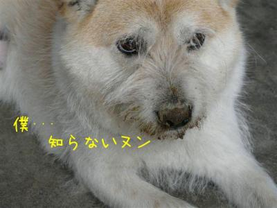 GI4aOMGU.jpg