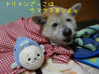 Y_ASAnIO.jpg