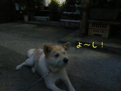 ZI_5U7r3.jpg