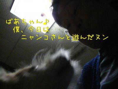 _MFY4IWw.jpg
