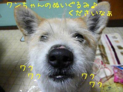 e_t_iQmF.jpg